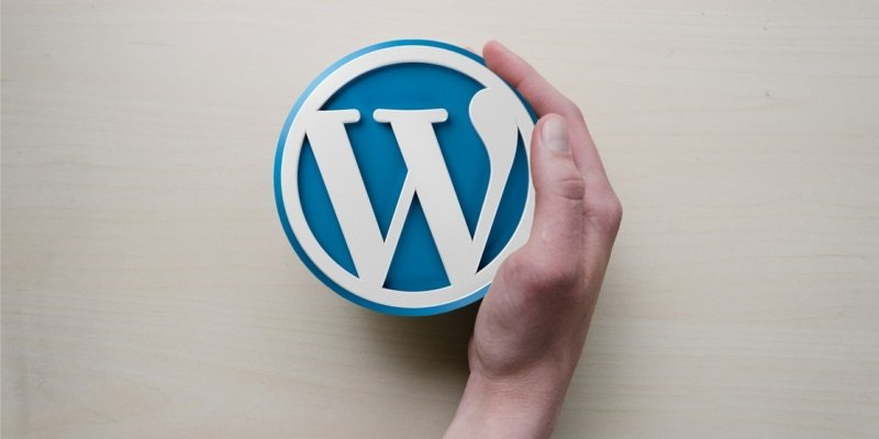 WordPress.com vs WordPress.org image of hand holding the blue WordPress logo